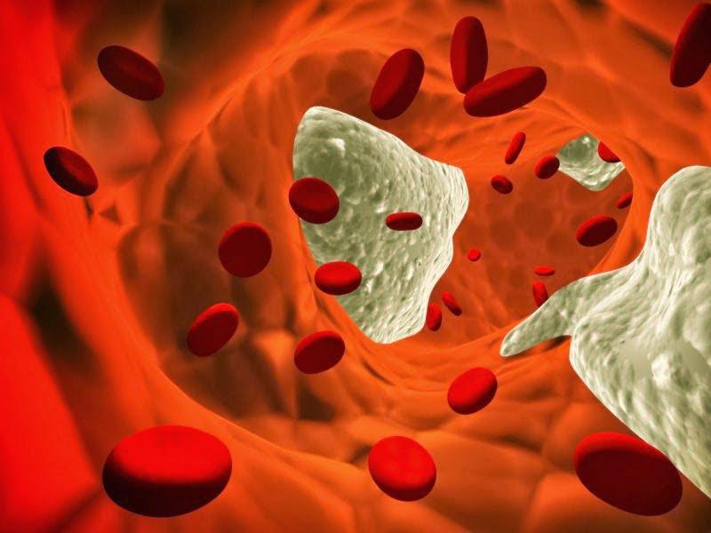 colesterol-densidade